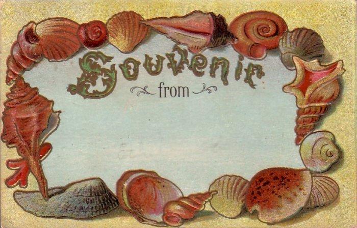 Souvenir From, Seashell Border 1910 Vintage Postcard - 4493