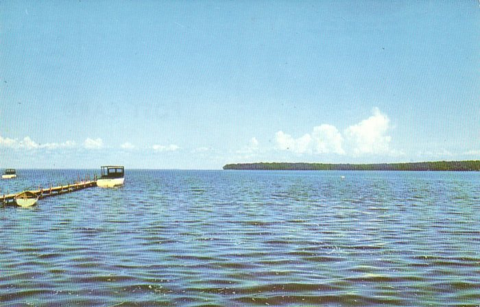 Mille Lacs Lake Minnesota MN 1956 Chrome Postcard - 4540