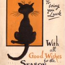 Black Good Luck Cat, Raphael Tuck & Sons' 1911 Vintage Christmas Postcard - 4570