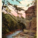 Gorge at Buttermilk Falls State Park Watkins Glen New York NY Vintage Postcard - 4707