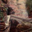 Sentry Bridge at Watkins Glen New York NY 1913 Vintage Postcard - 4709