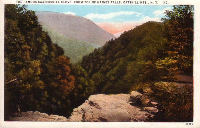 Kaaterskill Clove Catskill Mountains New York NY Curt Teich Vintage Postcard - 4710