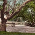 Old Rustic Bridge at University of California, Berkeley CA Vintage Postcard - 4783