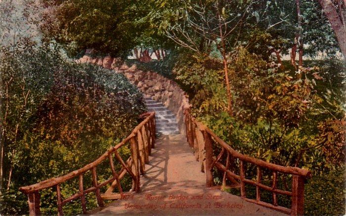 Rustic Bridge & Steps at University of California, Berkeley CA Vintage Postcard - 4785