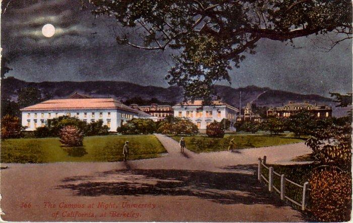Campus at Night University of California, Berkeley CA Vintage Postcard - 4787