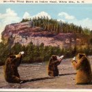 Three Bears at Indian Head White Mountains New Hampshire NH Postcard - 4812