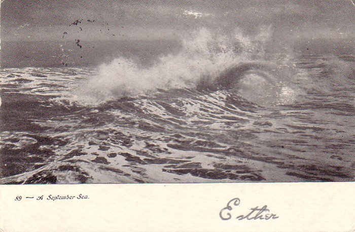 A September Sea, 1906 Vintage Postcard - 4855