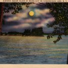 Squaw Island by Moonlight Canandaigua Lake New York NY Postcard - 4891