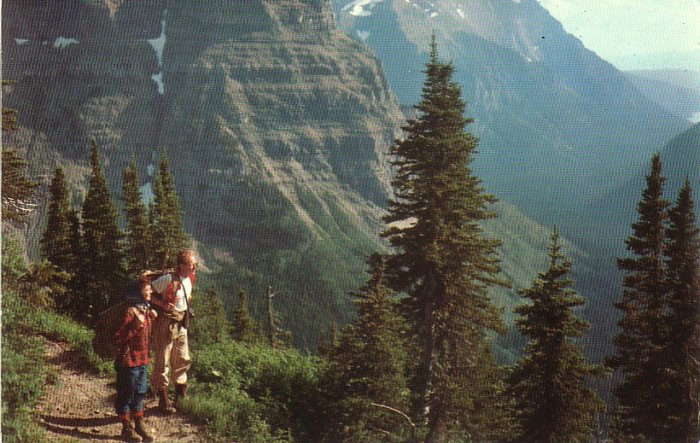 Thunderbird Mountain in Glacier National Park Montana MT Postcard - 4899