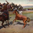 Cowboys Bringing in a Wild Horse Vintage Postcard - 4940