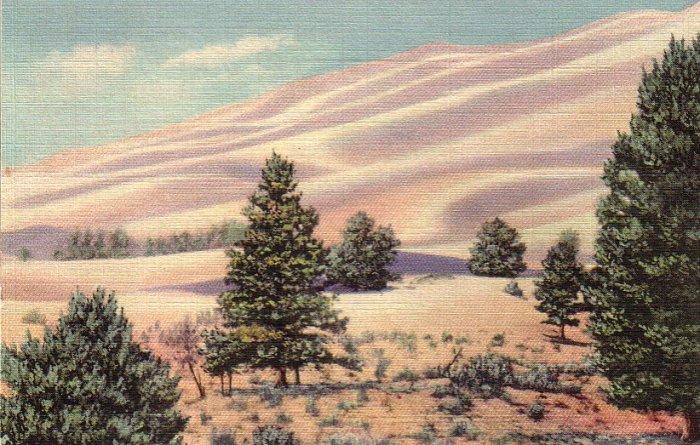 Great Sand Dunes in San Luis Valley Colorado CO 1936 Curt Teich Postcard - 4953