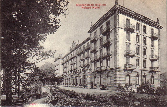 Palace Hotel in Burgenstock Switzerland Vintage Postcard - 4959