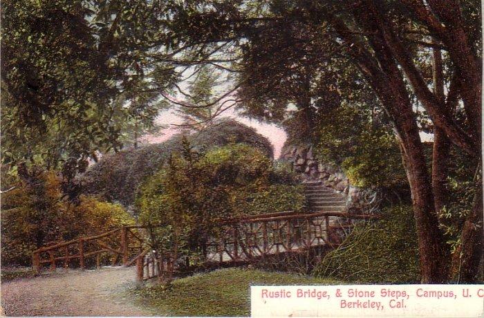 Rustic Bridge & Stone Steps on Campus University of California Berkeley CA Postcard - 4971