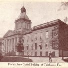 Florida State Capitol Building Tallahassee FL Vintage Postcard - 5063