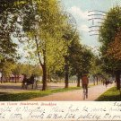 Bicycle Path on Ocean Boulevard in Brooklyn New York NY 1906 Vintage Postcard - 5066