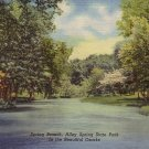 Spring Branch at Alley Spring State Park Eminence Missouri MO 1951 Curt Teich Postcard - 5109