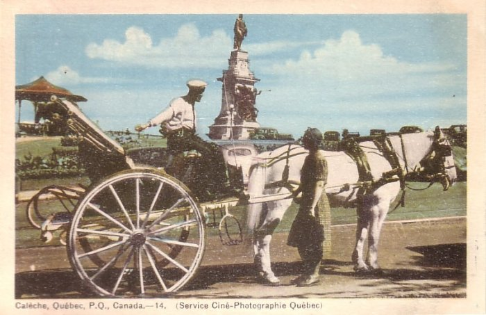 Horse Drawn Carriage in Quebec Canada Vintage Postcard - 5142