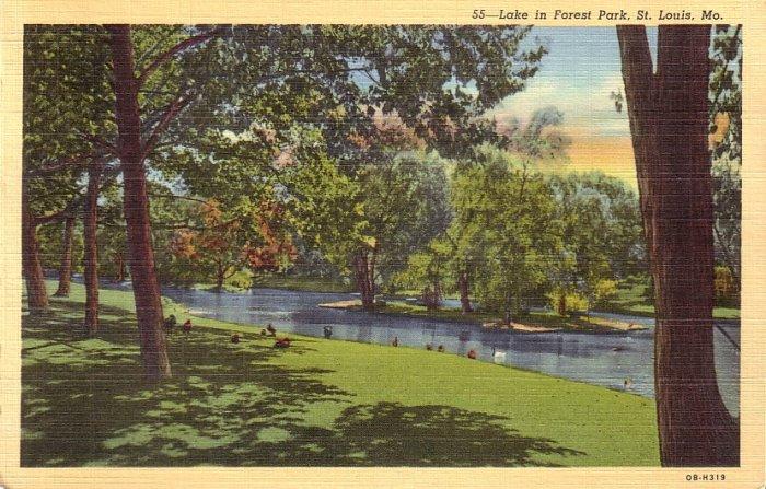 Lake in Forest Park St. Louis Missouri MO 1940 Curt Teich Linen Postcard - 5155