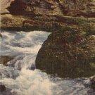 The Big Spring near Van Buren Missouri MO Curt Teich Linen Postcard - 5163