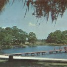 Lake Kathy Brandon Florida FL 1970 Chrome Postcard - 5207