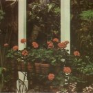 Orchids and Flowers on Breezeway at Edison Home in Ft. Myers Florida FL Chrome Postcard - 5216