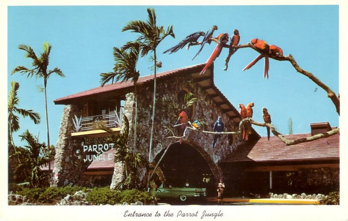 Entrance to Parrot Jungle Miami Florida FL 1955 Curt Teich Chrome Postcard - 5227