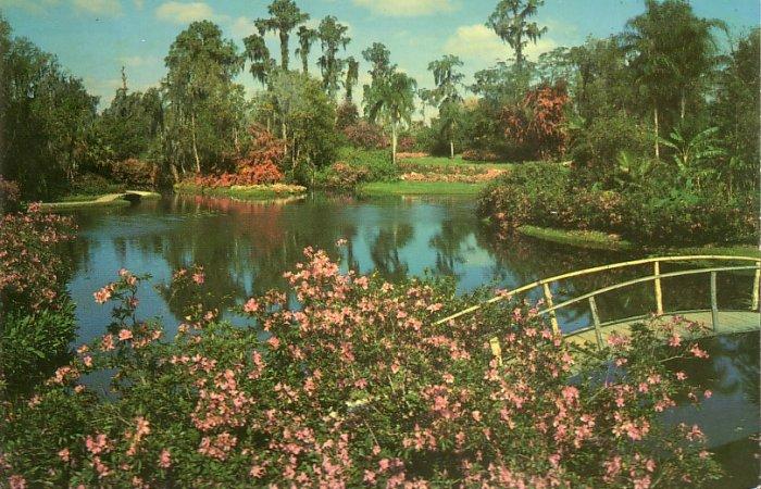 Famous Cypress Gardens in Winter Haven Florida FL Chrome Postcard - 5249