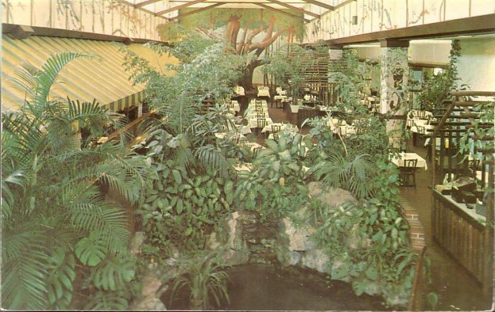 Garden Cafeteria in St. Petersburg Florida FL Chrome Postcard - 5250
