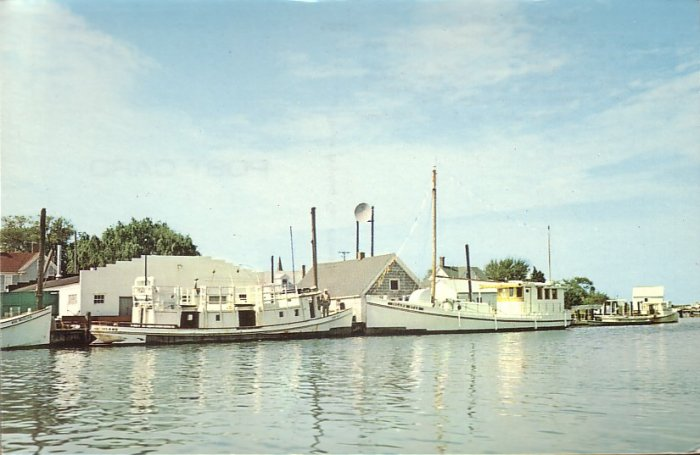 Harbor at Ewell on Smith Island Maryland MD, Chrome Postcard - 5258