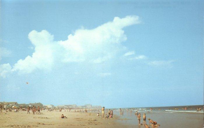 Sandy Beach in Ocean City Maryland MD, Chrome Postcard - 5260