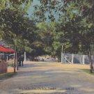 Marsalis Zoo in Dallas Texas TX Mid Century Linen Postcard - 5276