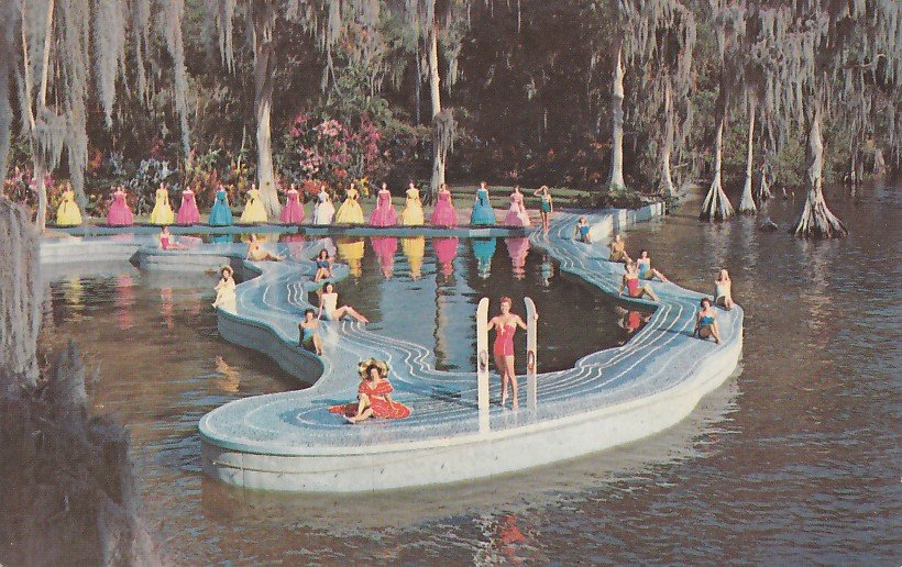 Southern Belles At Esther Williams Swimming Pool Cypress