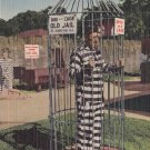 Old Jail Bird Cage in St. Augustine Florida FL, 1956 Curt Teich Linen Postcard - 5299