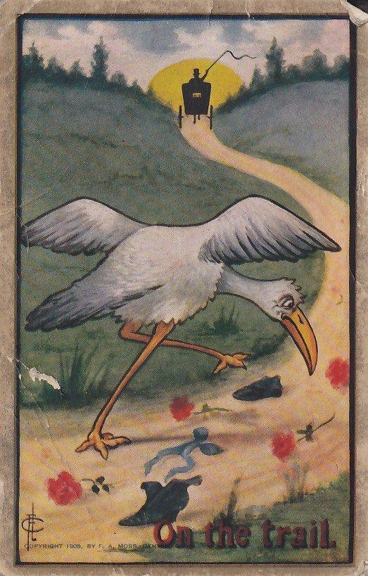 On the Trail, Fred L. Cavally Jr. Artist Signed 1910 Vintage Postcard - 5326