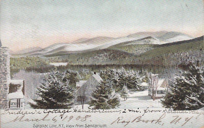 Trudeau's Cottage Sanatorium Saranac Lake New York NY Vintage Postcard - 4223