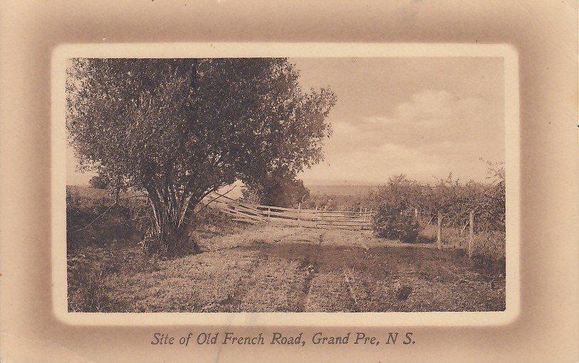 Site of Old French Road Grand-Pré, Nova Scotia Canada Vintage Postcard - 4121