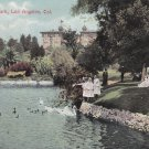 Swans in West Lake Park, Los Angeles California CA Vintage Postcard - 5422