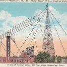WOC Tower on top of Palmer School in Davenport Iowa IA - 5432