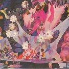 Africa - It's a Small World Disneyland Anaheim California CA Chrome Postcard - 5461