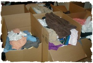 HUGE LOT 40 Womens Clothes ANN BANANA EXPRESS L 12/14