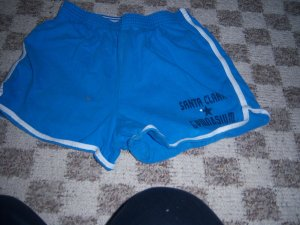 Blue shorts size XL 14/16 Girls