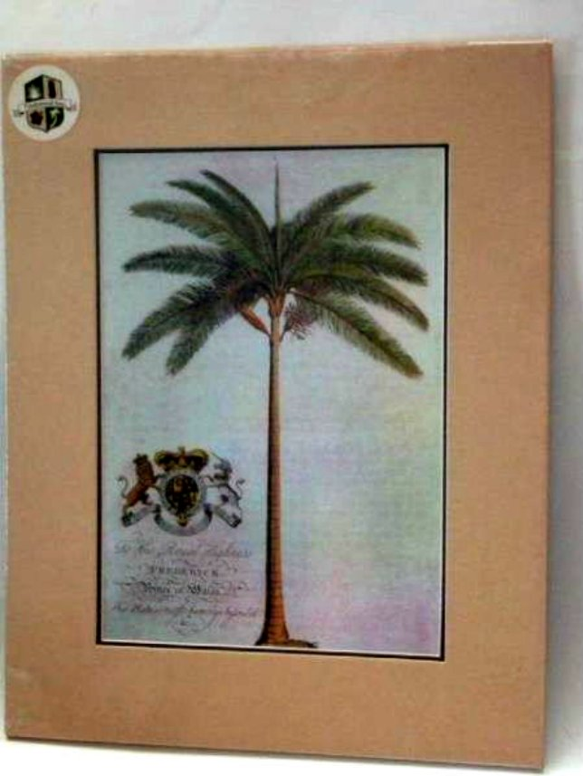 Tropical Palm Tree Print Wall Art Picture