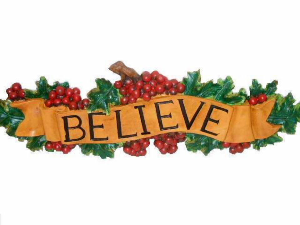 Inspirational Believe Grapes Wall Plaque