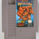 NES TECMO WORLD WRESTLING Nintendo Video Games