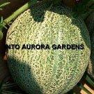 50 Cantaloupe Hales Best Jumbo Melon Heirloom Seeds