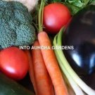 INTOAURORA EMERGENCY SURVIVAL ORGANIC VEGETABLE GARDEN SEEDS KIT 29 Different Varieties