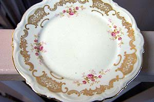 OLD MITTERTEICH GERMAN CHINA ROSELLA BREAD BUTTER PLATE