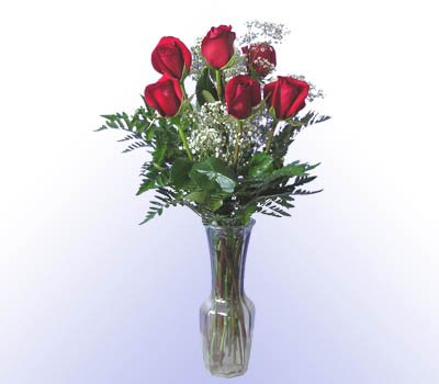6 Red Rose Bouquet w/Vase