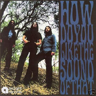 Amplified Heat CD How Do You AUSTIN STONER BOOGIE ROCK  $7.99 ~ FREE SHIPPING