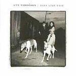 Van Morrison CD Days like This ~ FREE SHIPPING~ $9.99